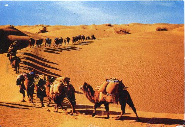 china-xinjiang-desert-caravan
